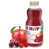 Herbatka z dzikiej róży z sokiem z czerwonych owoców BIO
