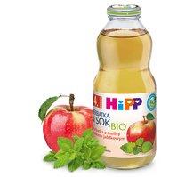 Herbatka z melisy z sokiem jabłkowym BIO